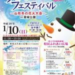 ウィンターフェスティバル~冬の花火大会~(JPEG)